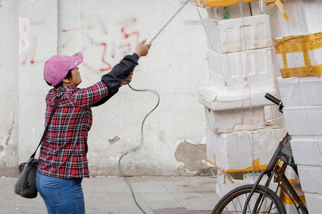 Noah Sheldon observes China's hidden workforce