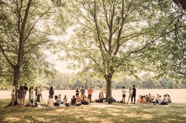 London as a National Park City:<br> a vision for the future