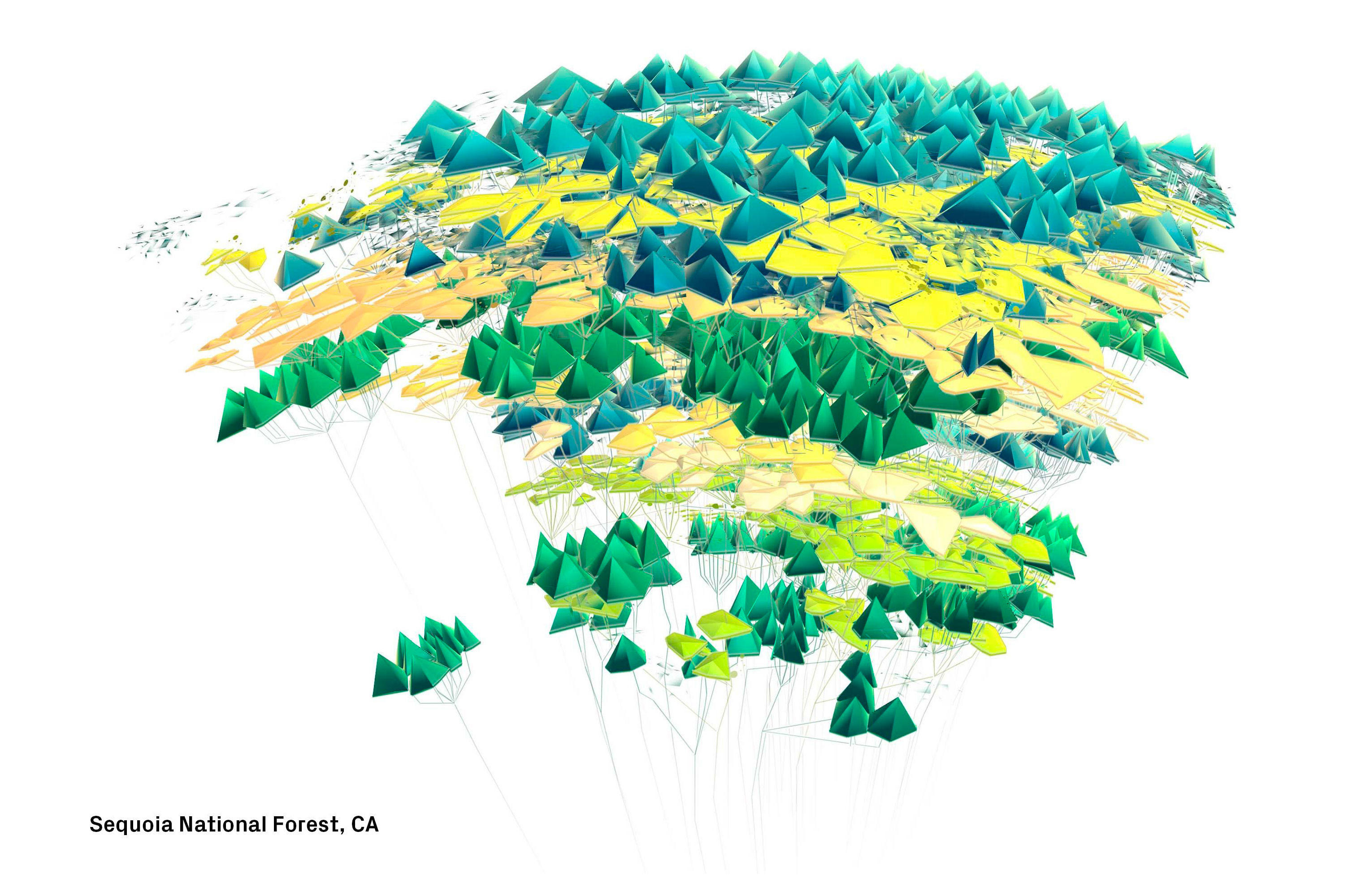 sequoia-national-forest.jpg