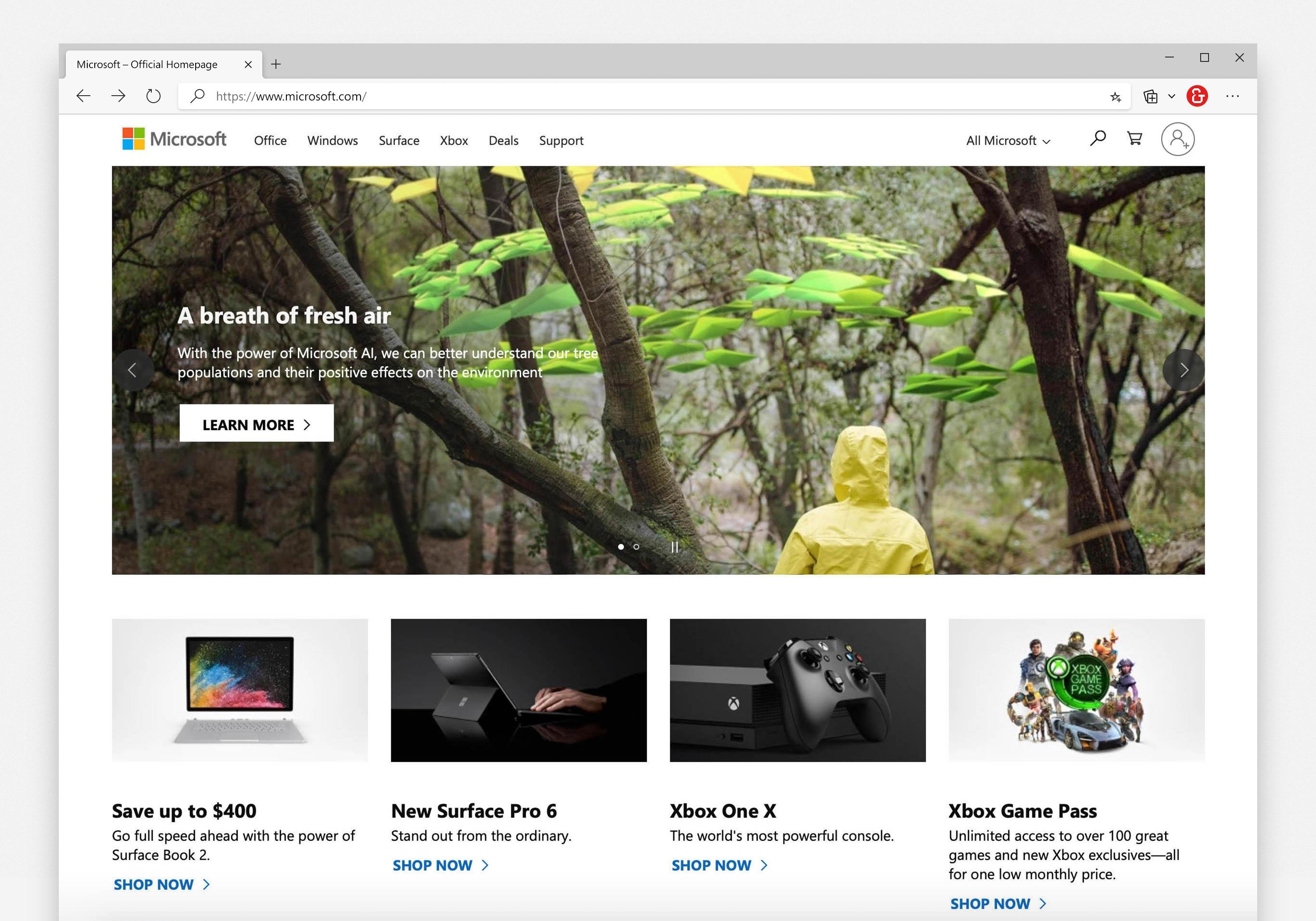 tree-potential-project-microsoft-homepage.jpg